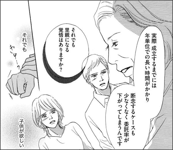 セカンド・マザー~特別養子縁組という選択~