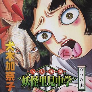 八犬伝説妖怪里見中学のイメージ