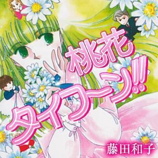 桃花タイフーン!!のイメージ