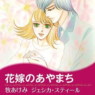 花嫁のあやまちのイメージ