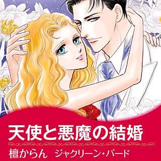 天使と悪魔の結婚のイメージ
