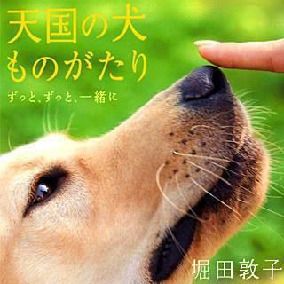 天国の犬ものがたり~ずっと、ずっと、一緒に~のイメージ