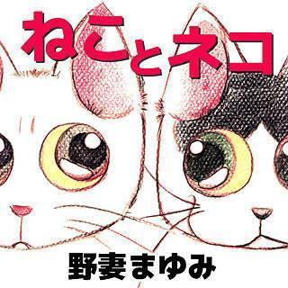 ねことネコのイメージ