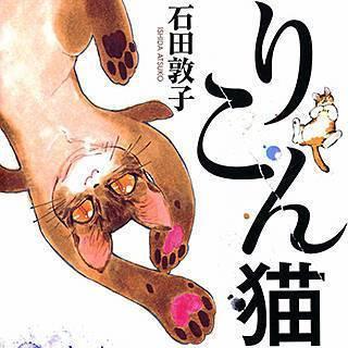 りこん猫のイメージ