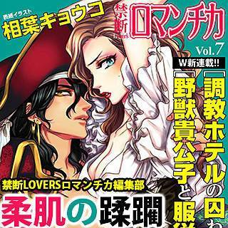 禁断Loversロマンチカ Vol.007 柔肌の蹂躙のイメージ