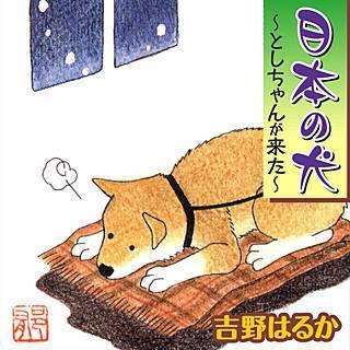 日本の犬~としちゃんが来た~のイメージ
